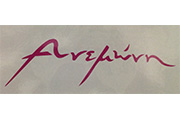 anemoni-makeawish-logo